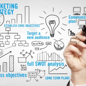 Marketing strategy development and communications planning | Whale ...